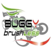 Buggy Brushless shop