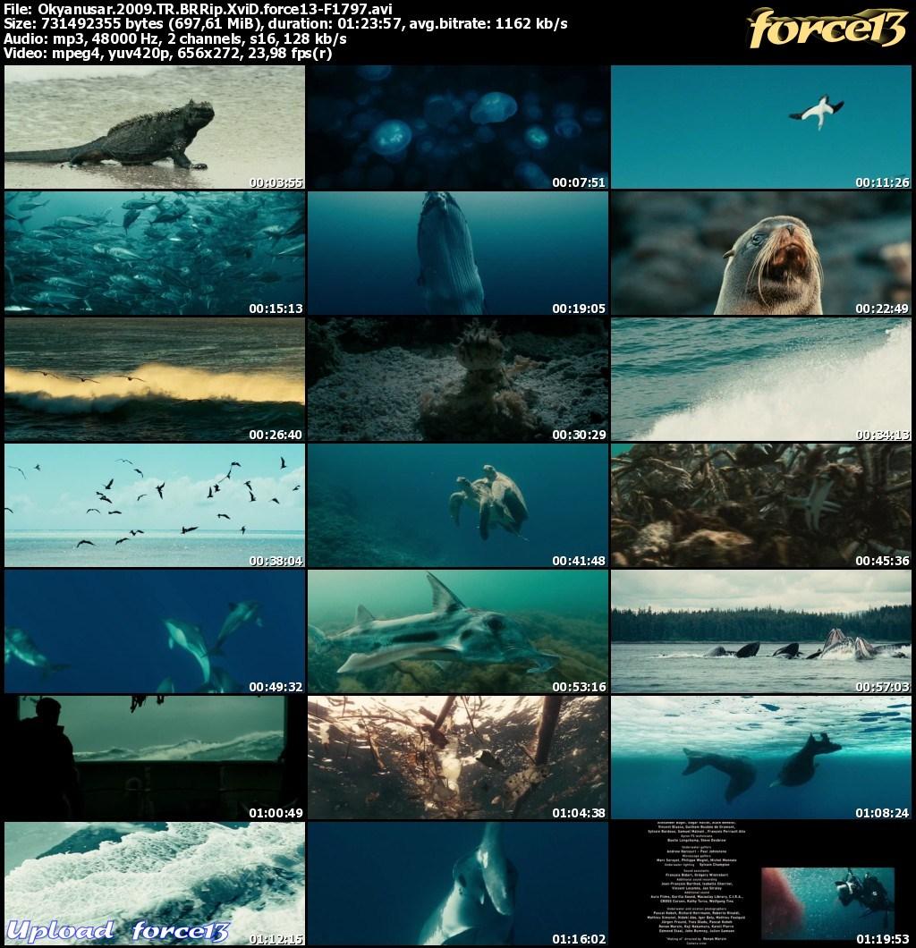 Okyanuslar | Océans | 2009 | BRRip XviD | Türkçe Dublaj  Img4e746a29e7d284530163224a0058c8e0