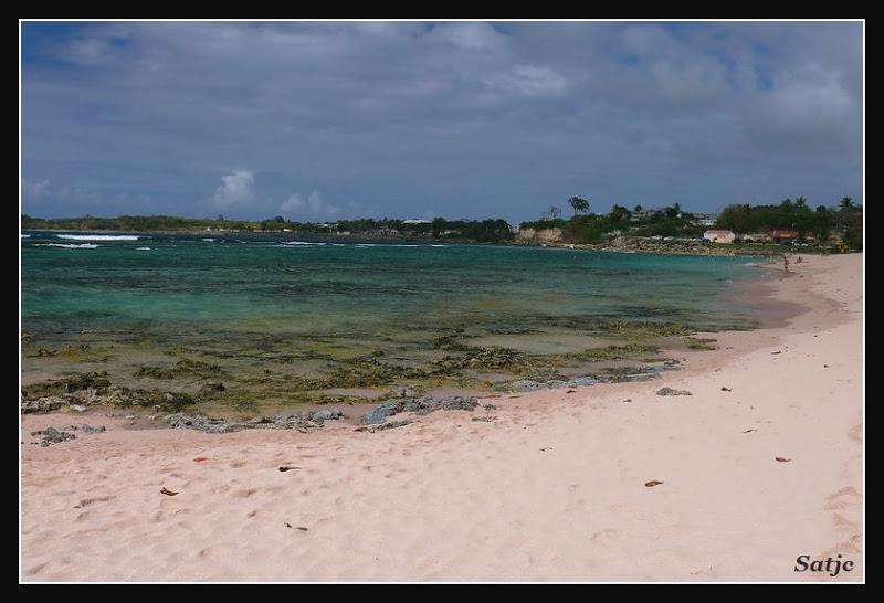 Les Belles Plages de Guadeloupe (LUMIX FZ50) Guadeloupe%202008%20-%20064