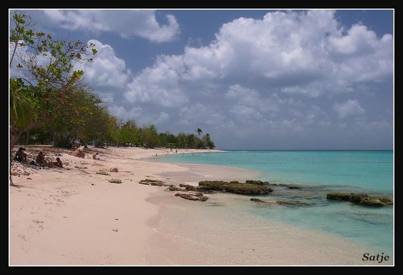 Les Belles Plages de Guadeloupe (LUMIX FZ50) Guadeloupe%202008%20-%20445