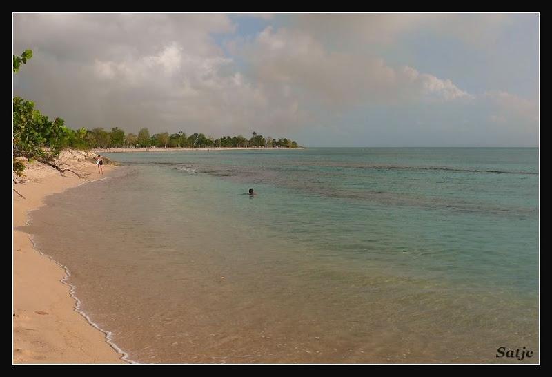 Les Belles Plages de Guadeloupe (LUMIX FZ50) Guadeloupe%202008%20-%20532