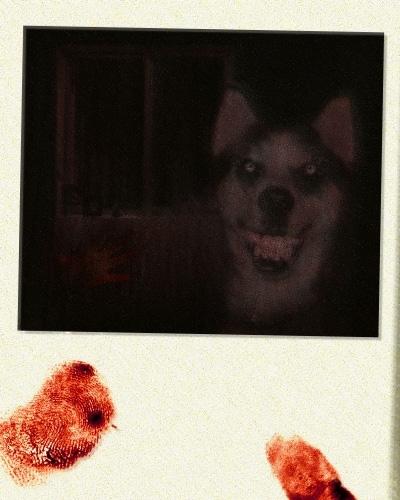Creepypastas Gerais - Página 8 Smiledog2