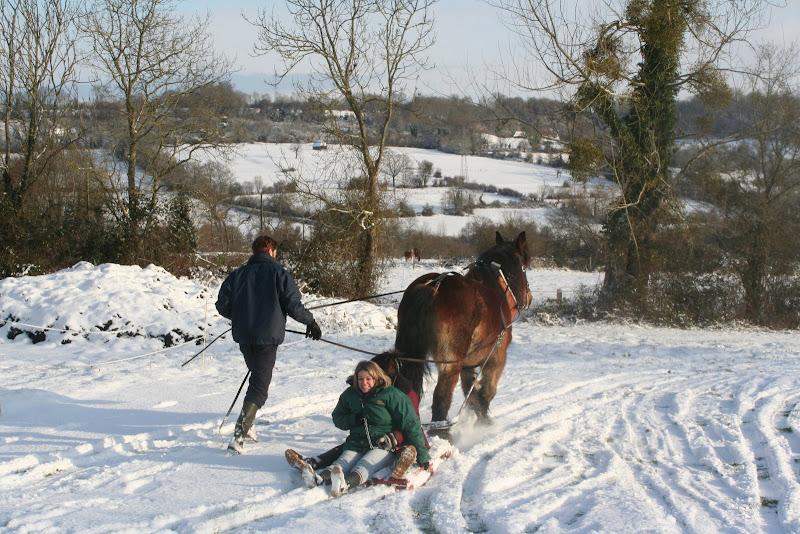 Le  calvados sous la neige... les chevaux s'éclatent! IMG_5216
