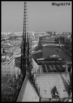 Une semaine printannière à Paris 50c.Notre-Dame