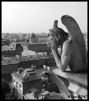 Une semaine printannière à Paris 47.Notre-Dame
