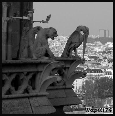 Une semaine printannière à Paris 50.Notre-Dame