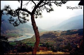 L'empire dans les nuages, Yunnan (Chine) 45%20Yangzi