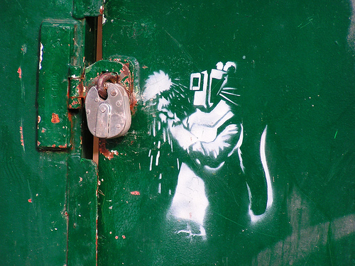 Graffiti 30-Stencil-Graffiti-Artworks-rat