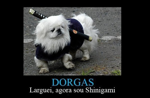 Dorgas. Shinigami