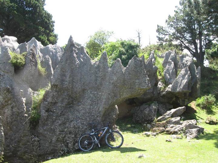 10-07-2010 RUTA MINERA. LA ARBOLEDA (Bizkaia) 43%2Crinocerontes-de-roca