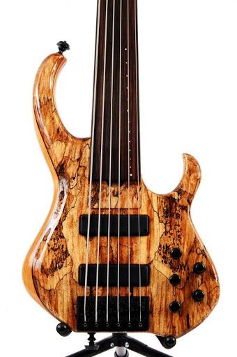 Skjold basses Henry02