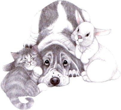 давайте посмеемся - Страница 38 CatDog%27s4