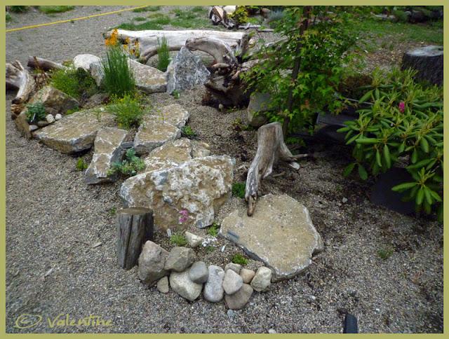Jardin alpin MiniRocailleJardinAlpin10%2006%2003_86RM
