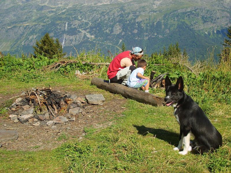 Nos loups grandissent, postez nous vos photos - Page 5 S6000523