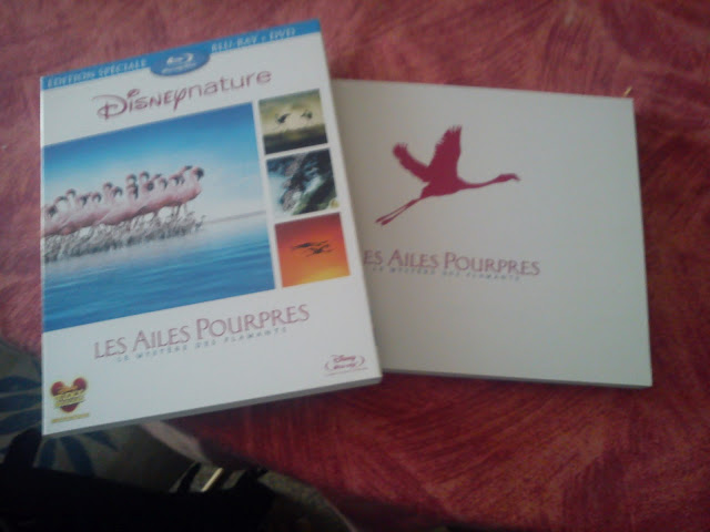 [BD + DVD] Félins (5 juin 2012) DSC00617