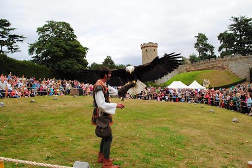 Comparação do tamanho de águias  com relação ao homem. DSC_0552
