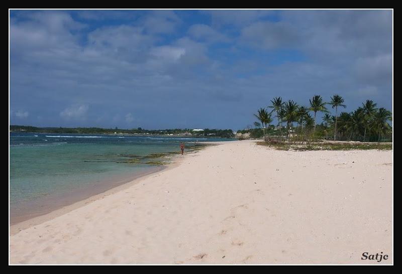 Les Belles Plages de Guadeloupe (LUMIX FZ50) Guadeloupe%202008%20-%20070