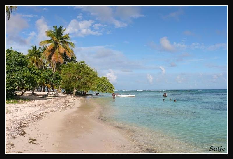 Les Belles Plages de Guadeloupe (LUMIX FZ50) Guadeloupe%202008%20-%20270