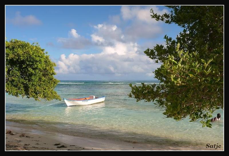 Les Belles Plages de Guadeloupe (LUMIX FZ50) Guadeloupe%202008%20-%20271