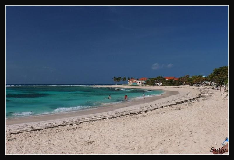Les Belles Plages de Guadeloupe (LUMIX FZ50) Guadeloupe%202008%20-%20324