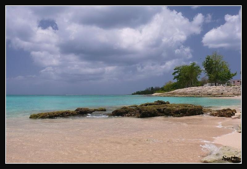 Les Belles Plages de Guadeloupe (LUMIX FZ50) Guadeloupe%202008%20-%20444