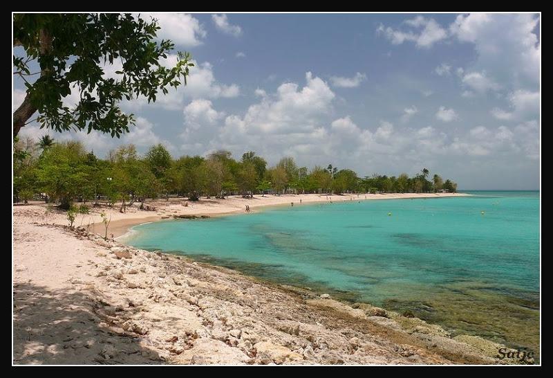 Les Belles Plages de Guadeloupe (LUMIX FZ50) Guadeloupe%202008%20-%20455