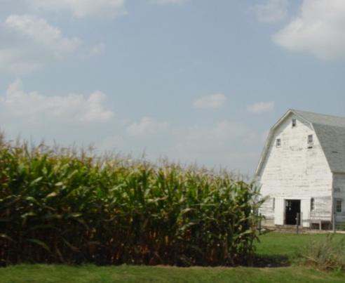 Cityskapes, Barns & Abandoned Places MISCfarm1