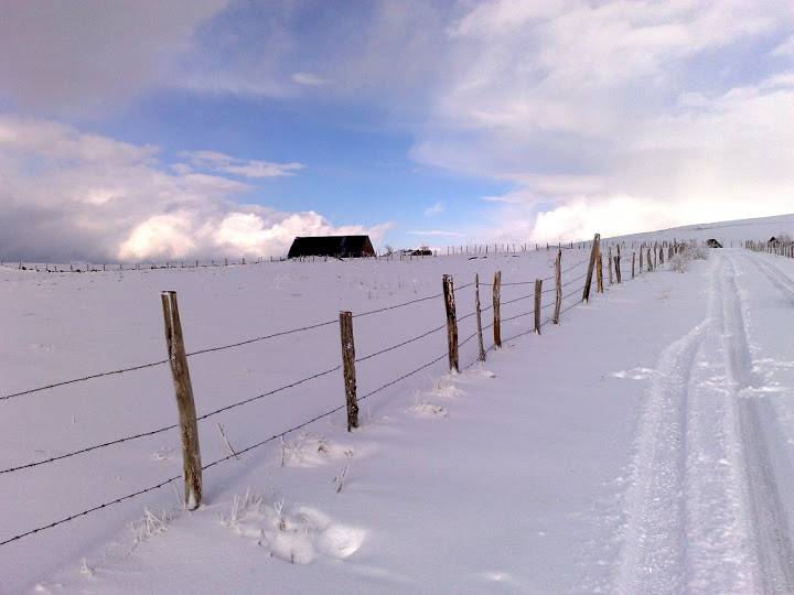 A quelques pas du Col d'Aulac... 22032008118