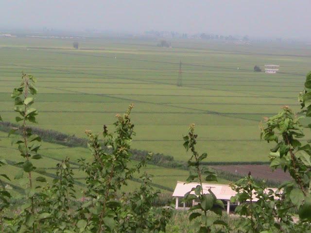 Fotos de las Crónicas de Un Viaje a Corea IMG_1042