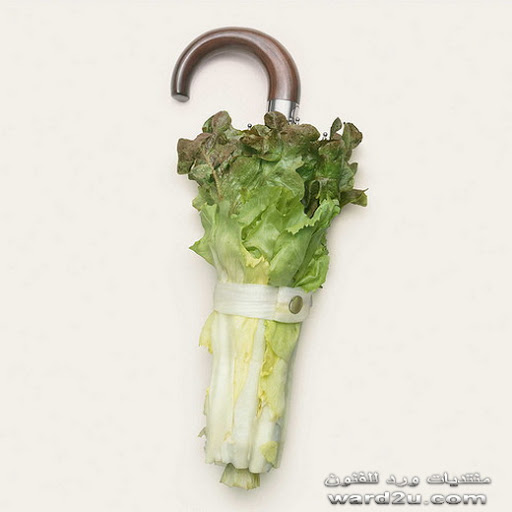نأكلها أو نستخدمها ~_~ 9-strange-accessories-www.ward2u.com