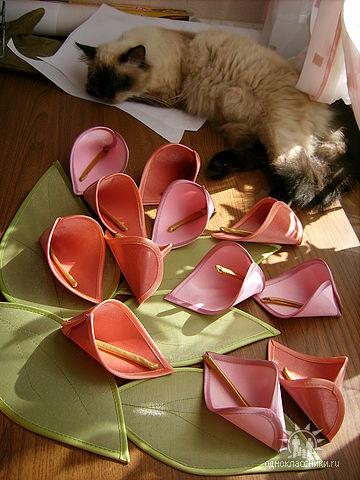 طريقة عمل ربطة الستائر MMZWK2CAG80EP1CAX15L2MCAWZWIDTCAE36J63CAW6V6HXCAHMS83FCAL094AWCAPYW0V6CA9YMAU2CA4CYQ8ICAXWPANYCAAGZDSWCA5LD0RBCAJKU9V1CA9JA5MSCA8Y9I5NCA1VRZAD