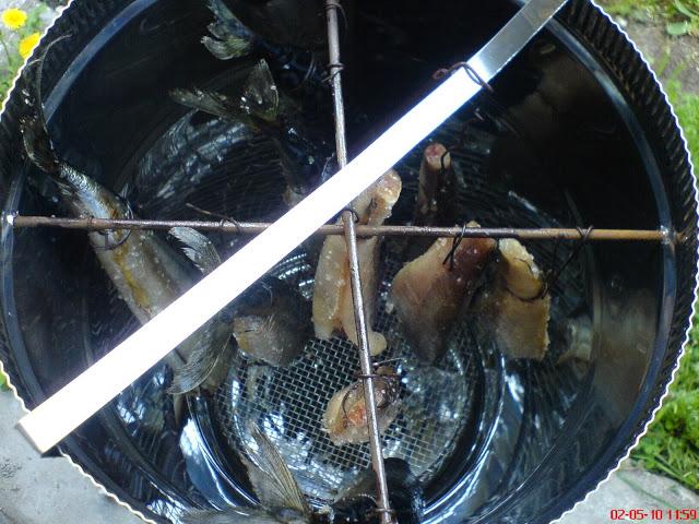 Пушене на риба в домашни условия.. DSC01662