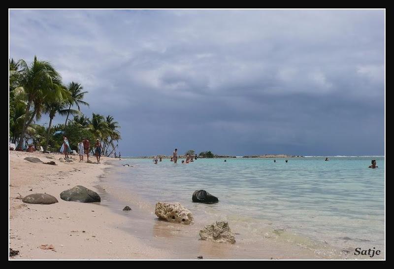 Les Belles Plages de Guadeloupe (LUMIX FZ50) Guadeloupe%202008%20-%20244
