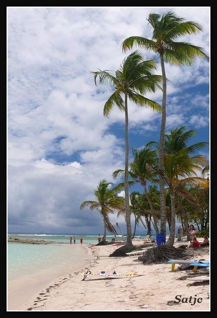 Les Belles Plages de Guadeloupe (LUMIX FZ50) Guadeloupe%202008%20-%20248