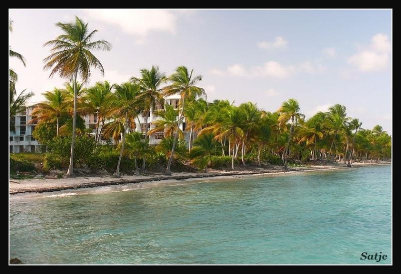 Les Belles Plages de Guadeloupe (LUMIX FZ50) Guadeloupe%202008%20-%20374