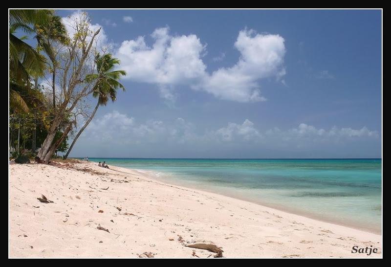 Les Belles Plages de Guadeloupe (LUMIX FZ50) Guadeloupe%202008%20-%20422