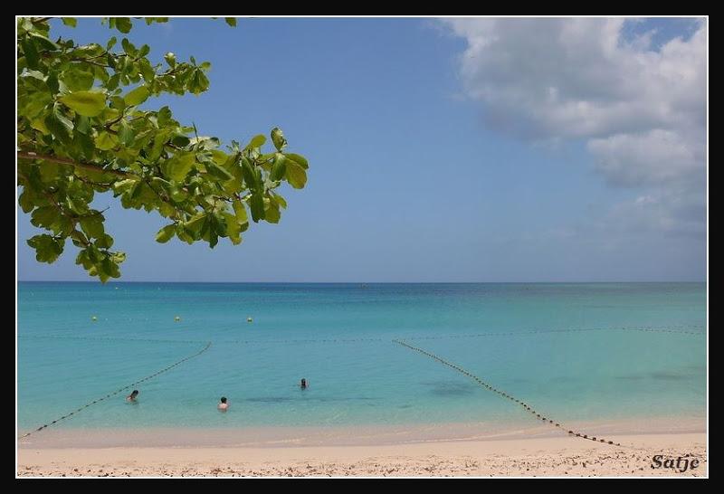 Les Belles Plages de Guadeloupe (LUMIX FZ50) Guadeloupe%202008%20-%20441
