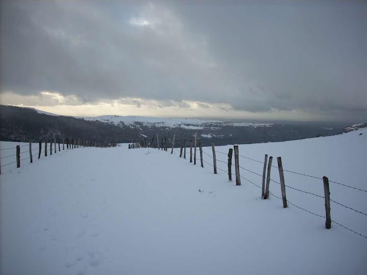 A quelques pas du Col d'Aulac... DSCN3423_s