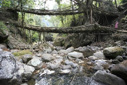 [Villa Carmesí] Puente que da a la villa 2808362372_99ac1ceb4d_o