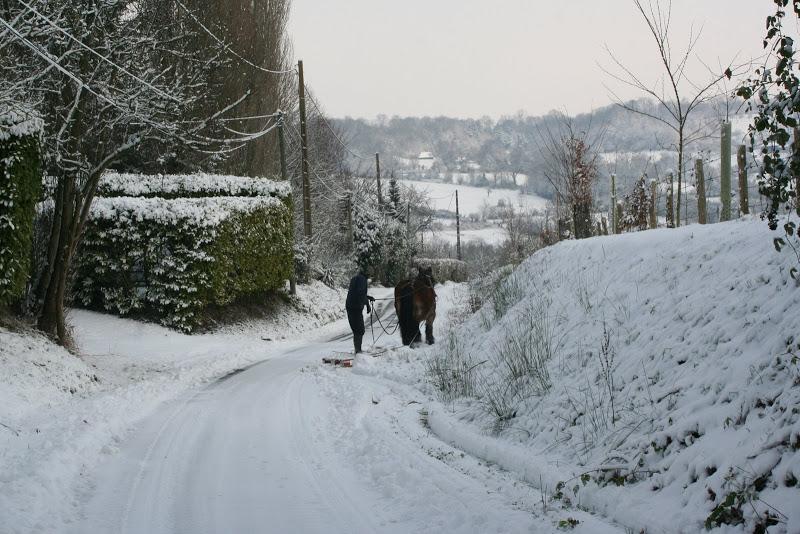 Le  calvados sous la neige... les chevaux s'éclatent! IMG_5116