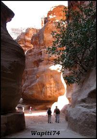 Jordanie : au pays des Nabatéens, des Grecs, des Croisés... et de Dame Nature ! 288%20Petra