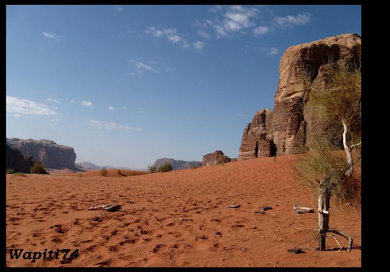 Jordanie : au pays des Nabatéens, des Grecs, des Croisés... et de Dame Nature ! Wadi%20Rum
