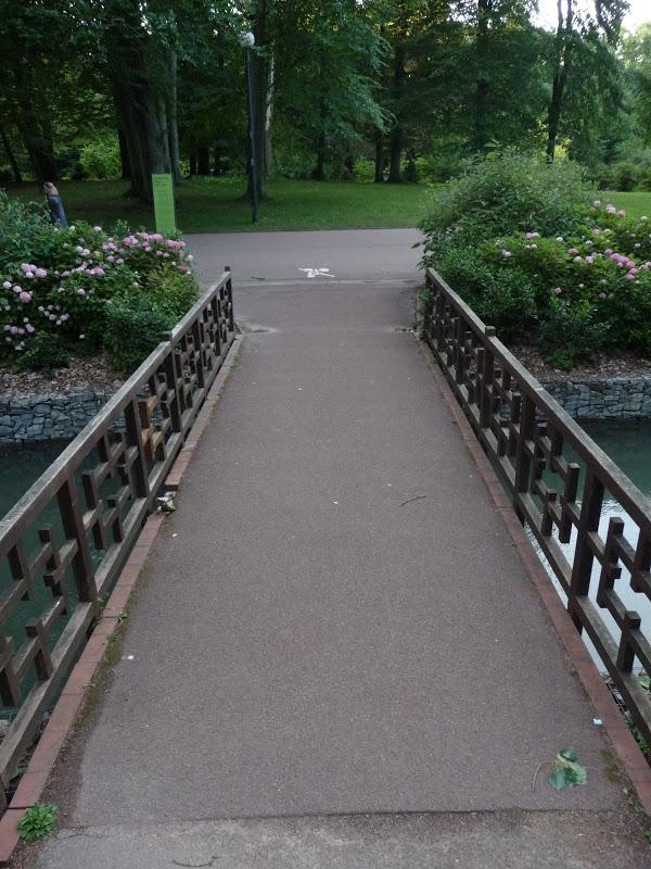 Rails dans le paysage... 2009_06_23__08_Rails_Pont_P1040858