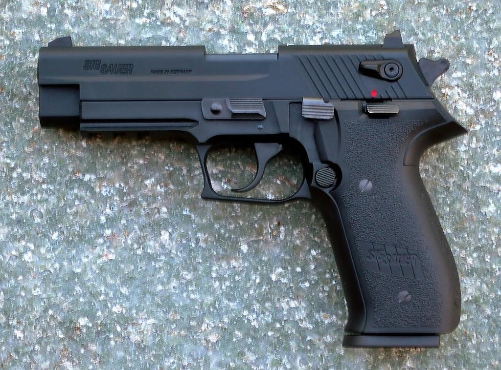 Choix d'un 22 LR type combat (P22/Mosquito/87 Cheetah/CZ75) DSCN1671bis