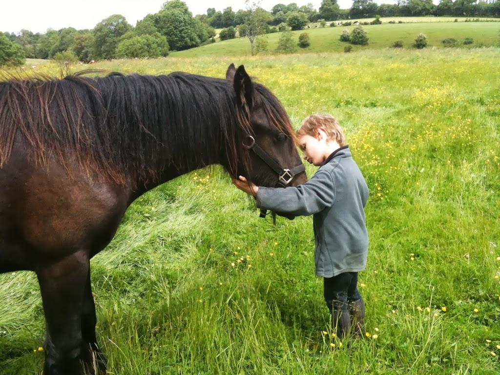 Thème de décembre : les chevaux et les enfants IMAGE_ADA08E79-D4C6-4894-83C0-D32571722823