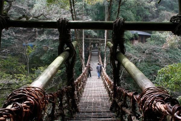 Самые большие и красивые мосты мира 13-39