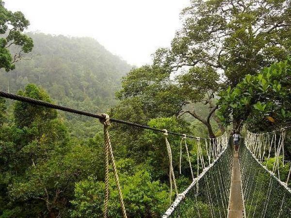 Самые большие и красивые мосты мира 16-26