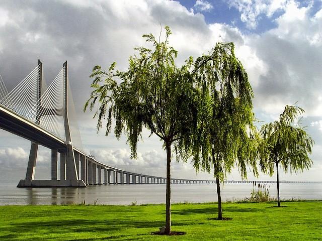 Самые большие и красивые мосты мира 3