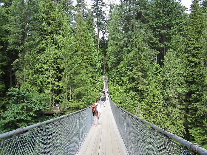 Самые большие и красивые мосты мира - Страница 2 10