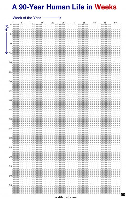 Простой календарь, который сделает вашу жизнь осмысленной 15073645-Weeks-520x822